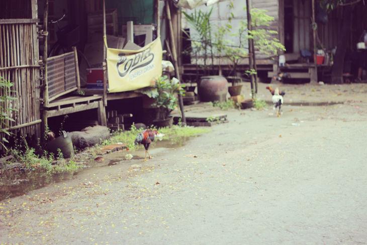 ミャンマーの日常風景12